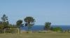 Campo O Sean
