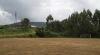Campo San Xurxo (San Xurxo-Cotobade, Pontevedra)